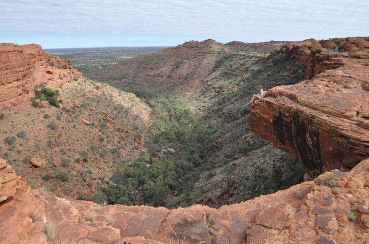 Living on the edge #Australia