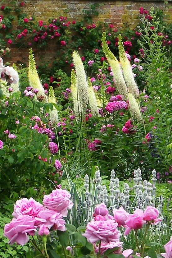 roses paired with eremurus (foxtail lilies) + lamb's ears = great textures