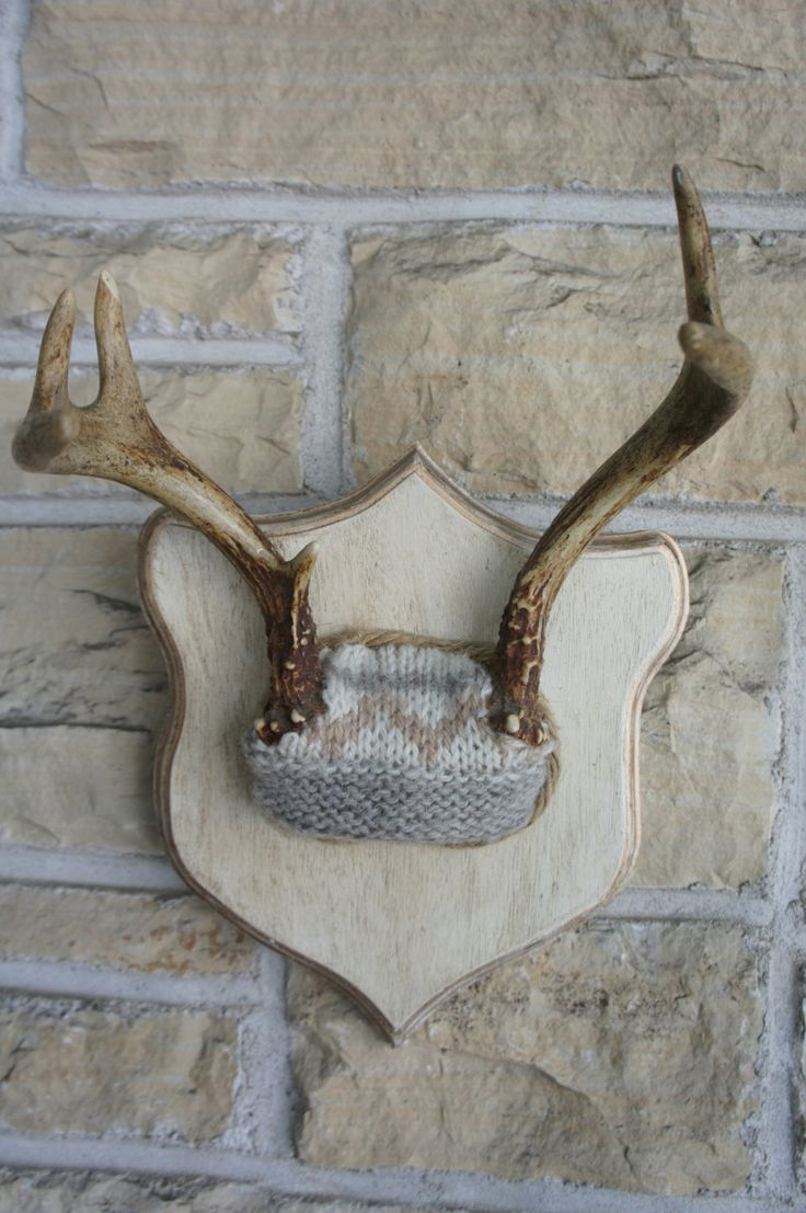 Deer Antlers Winter White Woodland Decor Horns Roe Deer Unique Taxidermy  Wall Art. 55.00,