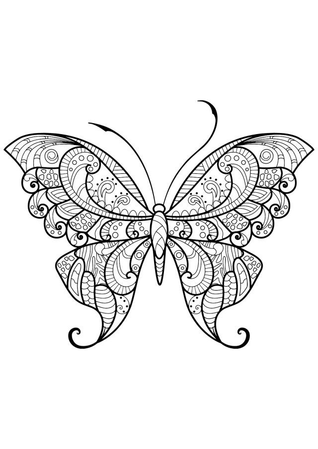 Free Butterfly Coloring Pages Butterflies To Download For Free Butterflies Kids Coloring Pages Entitlementtrap Com In 2020 Butterfly Coloring Page Insect Coloring Pages Mandala Coloring Pages