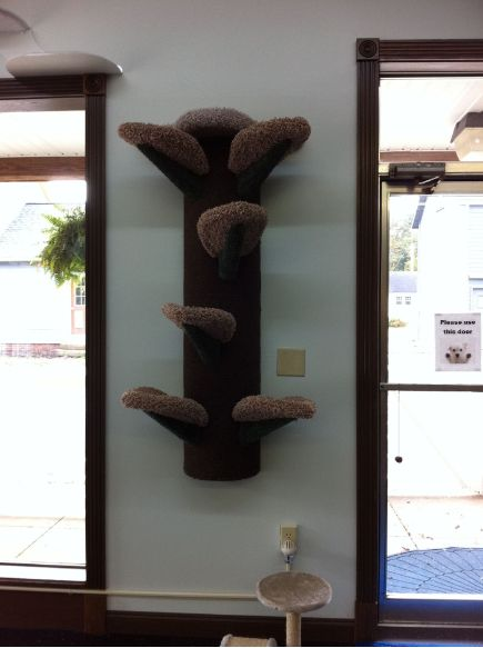 Wall mounted cat tree saves space can add accessories for building a whole playground cats - Wall mounted cat climber ...