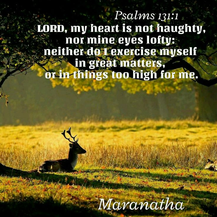 Psalms 131:1 (KJV)  LORD, my heart is not haughty, nor mine eyes lofty: neither do I exercise myself in great matters, or in things too high for me.