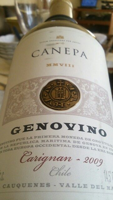 Genovino Carignan 100% vivacious and intensely colored wine with notes of violets and a touch of minerals - Maule - Chile