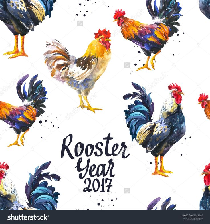 Seamless Pattern With Domestic Bird In Different Poses. Sketch Style. Realistic Watercolor Illustration Of Multicolor Rooster On White Background. 2017 Chinese New Year Of The Cock. - 472817905 : Shutterstock