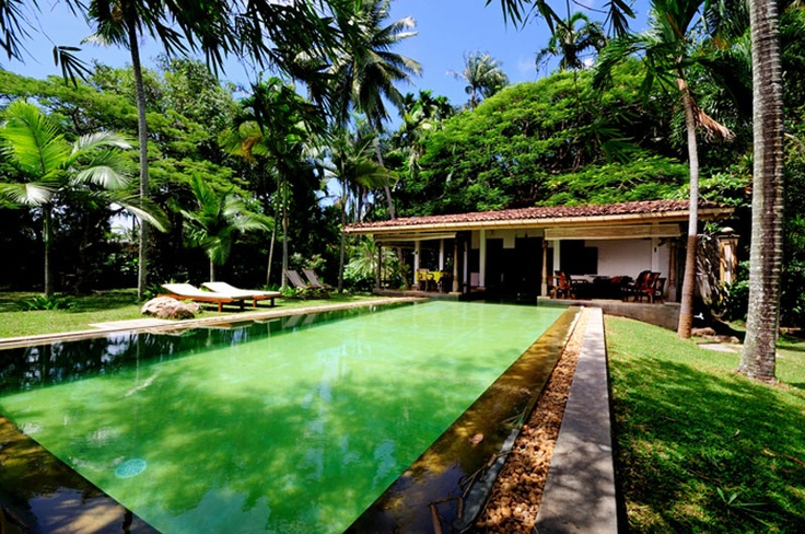 Villa Java Moon, Bolgoda, Sri Lanka