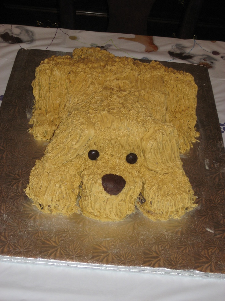 Dog or puppy cake: I was going more for Labrador yellow ...