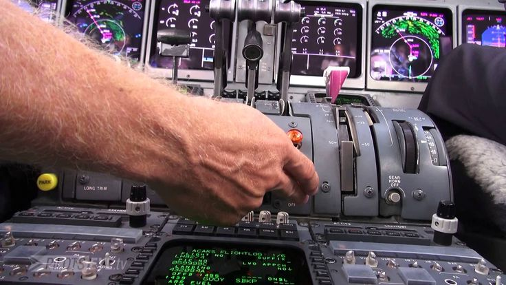 Always be prepared – Pilot Claus Richter presents the handbook for abnormal situations and explains in detail what to do in the case of a bird strike. https://wunderflug.com/magazine/always-be-prepared-look-into-the-handbook-for-abnormal-situations/