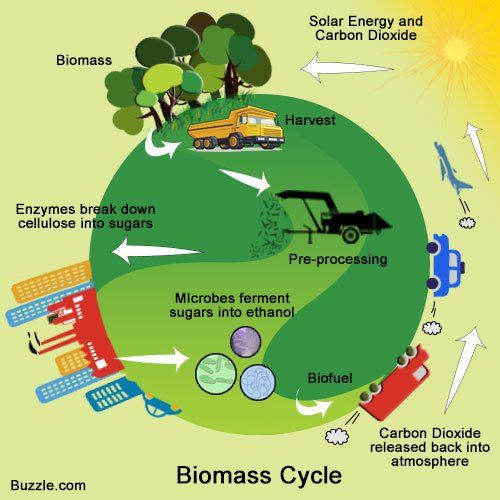 a research on biomass and biofuels as alternative sources of energy Alternative energy sources: alternative energy encompasses all biomass is renewable source of energy as we would be able research shows that 93% of.