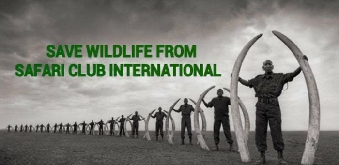 Please sign: SHUT DOWN SAFARI CLUB INTERNATIONAL (SCI) > http://www.thepetitionsite.com/762/406/576/shut-down-safari-club-international-sci/