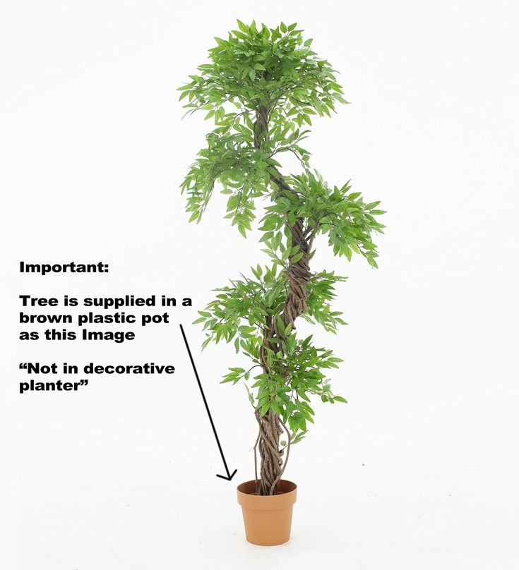 Best Quality Artificial Plants and Trees Large Beautiful Japanese Fruticosa Tree Handmade Using Real Bark  #ArtificialPlants