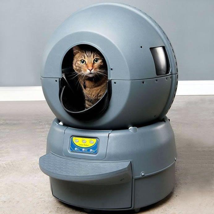 Litter-Robot Automatic Litter Box, uma caixa de areia para gatos que limpa automaticamente e evita odores. Depois que o sensor da caixa detecta que um gato