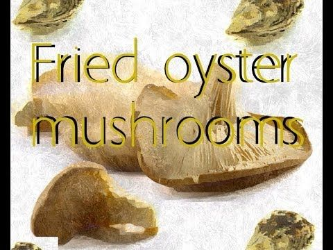 Fried oyster mushrooms - YouTube