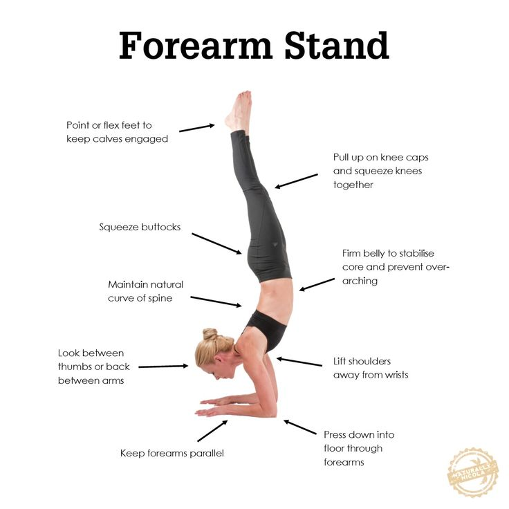 A forearm stand is one of those poses that looks fancy and a little bit scary but is actually pretty fun to explore. Here are three tips to help you get there.
