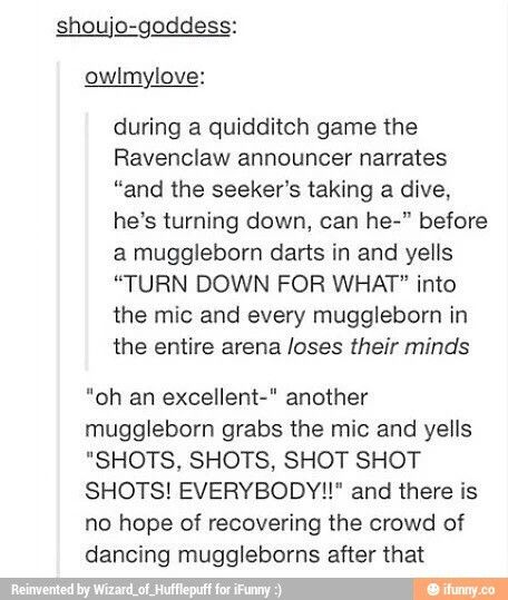 Muggle borns of Hogwarts<<I need this to happen<<<<i actualy started daydreaming about this on a bus and i started laughing and about 15 people turned around and stared at me....good to know someone out there thhought this would be entertaining aswell. << that comment