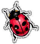 Ladybug glitter graphics