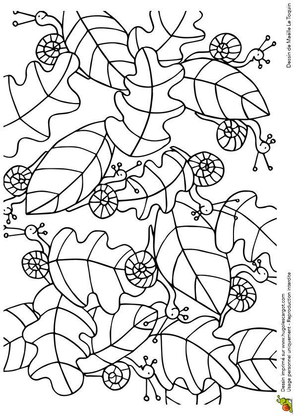 Cache Cache Feuilles Escargots, page 7 sur 16 sur HugoLescargot.com
