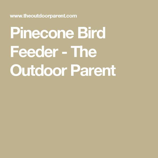 Pinecone Bird Feeder - The Outdoor Parent