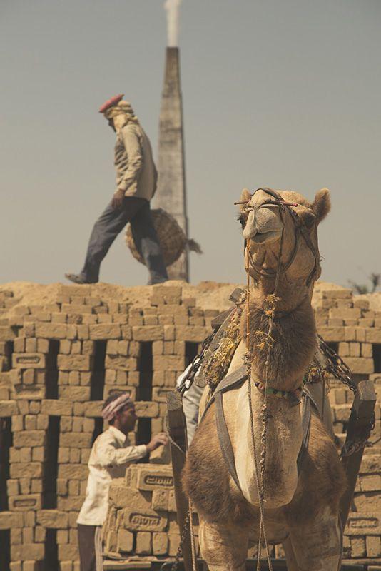 Briqueterie au Rajasthan © Nikolaz Godet