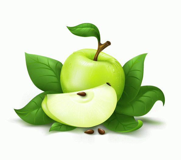Green apple vector material Download