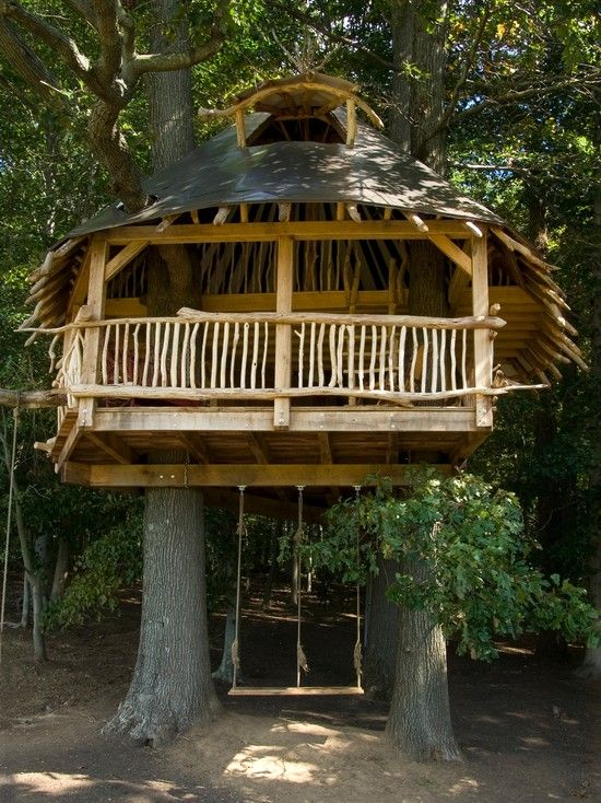 Magnificent Luxury Tropical Homes Design Ideas : Magnificent Luxury Tropical Homes With Tree House Style Made All By Wooden