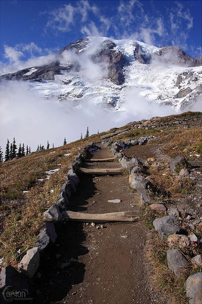 Skyline Trail at Paradise. This 5.5 mile loop is an excellent chance to see many of the beautiful treats of Mt. Rainier all at once.