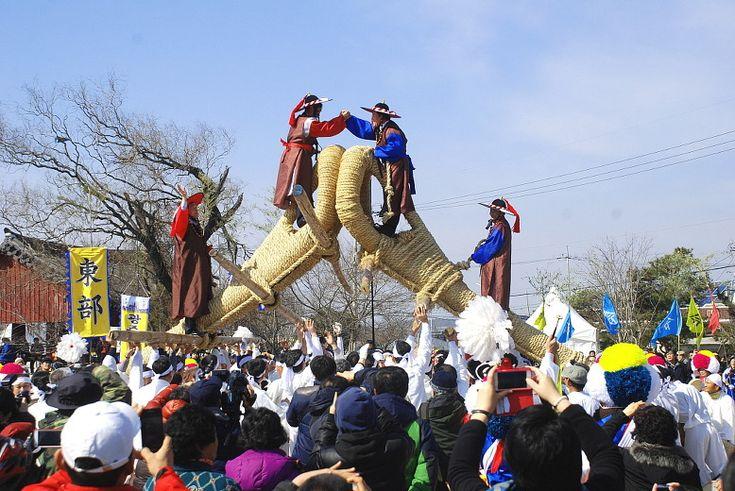 광주칠석 고싸움놀이 축제 관람기