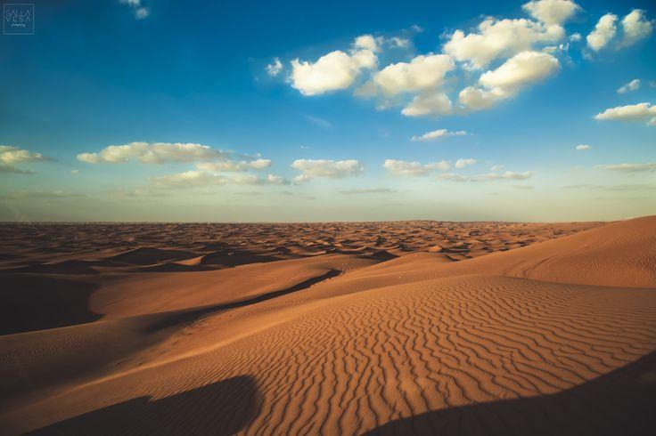 Arabian Desert @ Dubai 12_12_2016 // © valokuvaaja Salla Vesa // salla.vesa (a) gmail.com /// www.facebook.com/sallavesaphotography // https://www.instagram.com/sallavesaphoto/