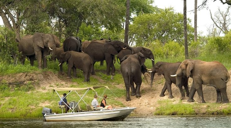 © Wilderness Safaris | Zambia