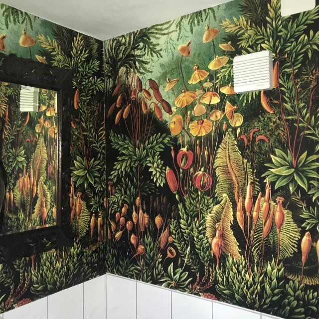 Amazonian Jungle Removable Wallpaper Repositionable Peel And Etsy Tropical Wall Decor Removable Wallpaper Vintage Walls