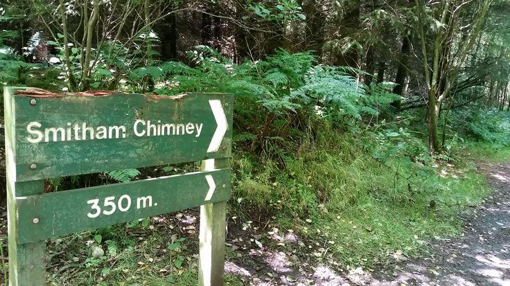 Summer at Smitham Chimney & East Harptree Wood, Mendip Hills AONB, Somerset. #MTB #MendipHills