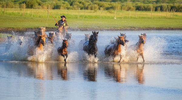 Photo tourism in Inner Mongolia is beginning to supply farmers with a bit of extra money as they run their horses for the serious photo tourists! #Horses #Inner_Mongolia #Travel #China #Beauty