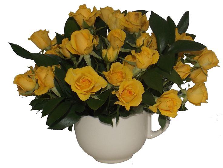Tabiet Ziua buna se cunoaste de dimineata intr-o cana cu flori ...
