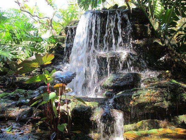 Waterfall,Marie Selby Botanical Gardens, Sarasota, Florida