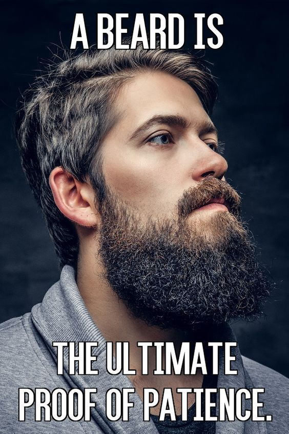 A Beard Is the Ultimate Proof of Patience From Beardoholic.com