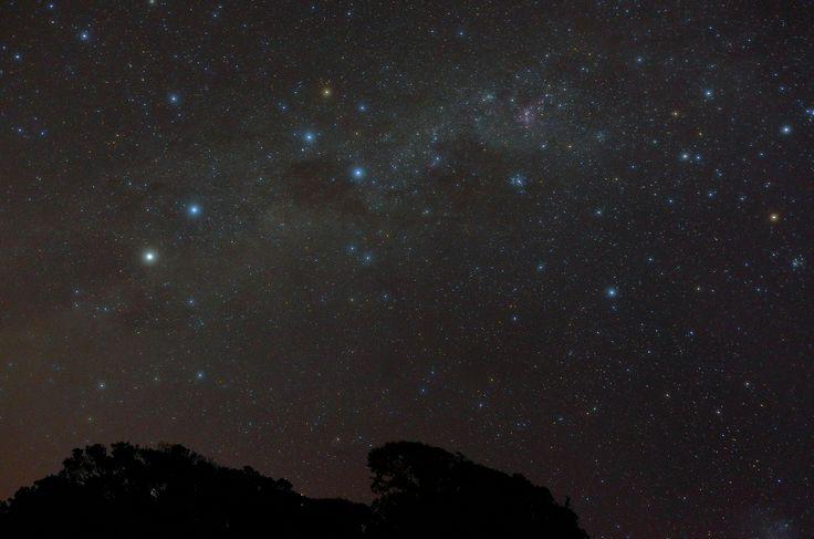Stars at Muriwai Beach