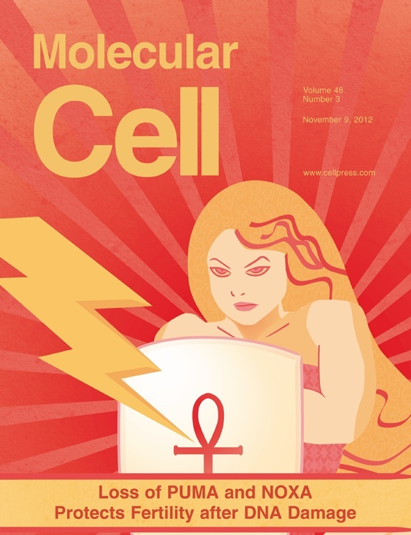 This month's cover of molecular Cell, was designed by WEHI, Melbourne, Australia. Pretty cool may I add.