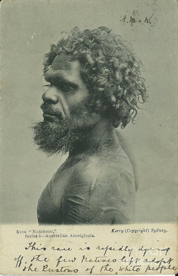 Aboriginal man Photograph by Pre Eighteenth Cetury - Aboriginal man Fine Art Prints and Posters for Sale