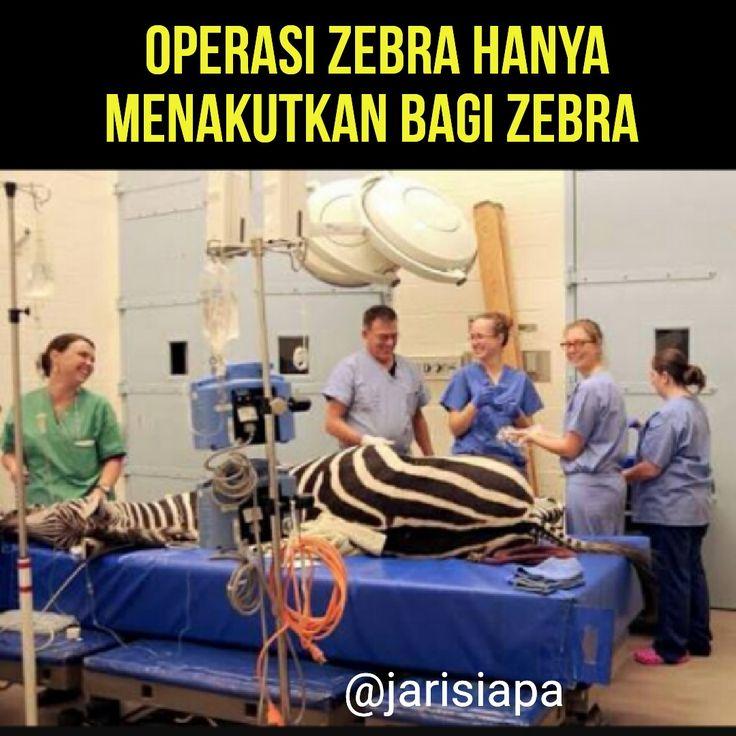 Sukseskan operasi zebra.