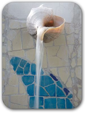 Seashell water spout - this is way too cool! make water feature with 3 or 4 seashells that cascade down the wall to a basin at the bottom