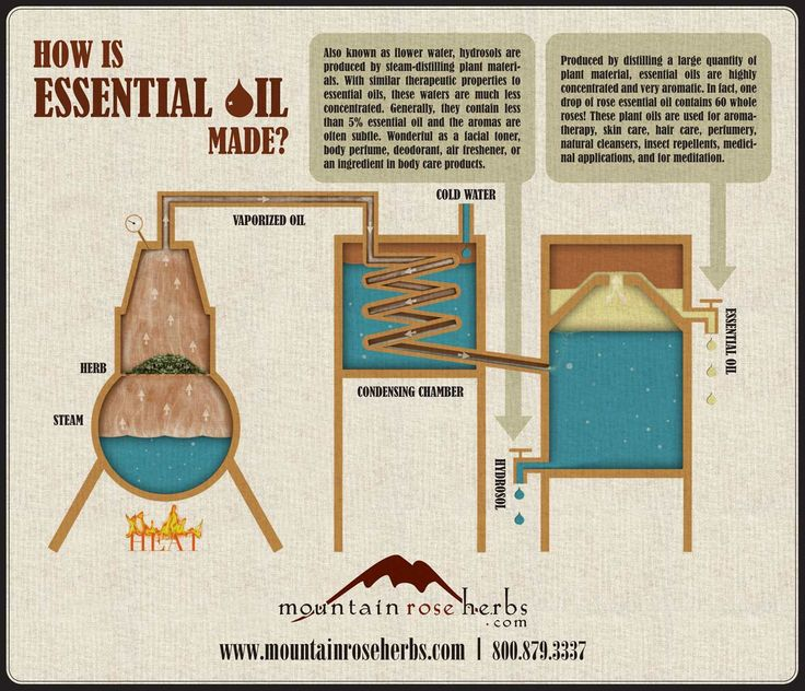 How is Essential Oil Made?    Did you know that it takes 60 whole roses to produce just one drop of essential oil?    The pure potency of each drop makes these precious ingredients powerful tools for aromatherapy and healing. Check out this fascinating infographic we created to outline the production of essential oils and hydrosols, from fresh living plants to distilled aromatic concentrates.