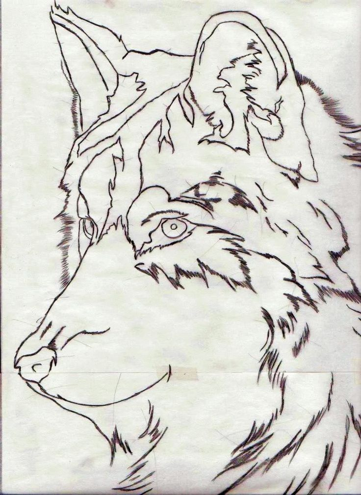 Tattoo Drawing Outline : Best images about tattoo on pinterest wolves brave
