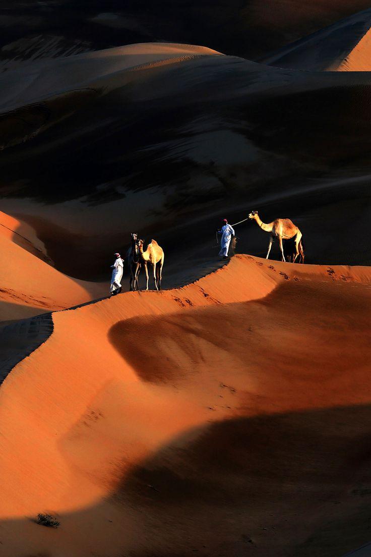 4x4 Dubai Desert Safari https://www.desertsafaridubairfk.com/ #desertsafari