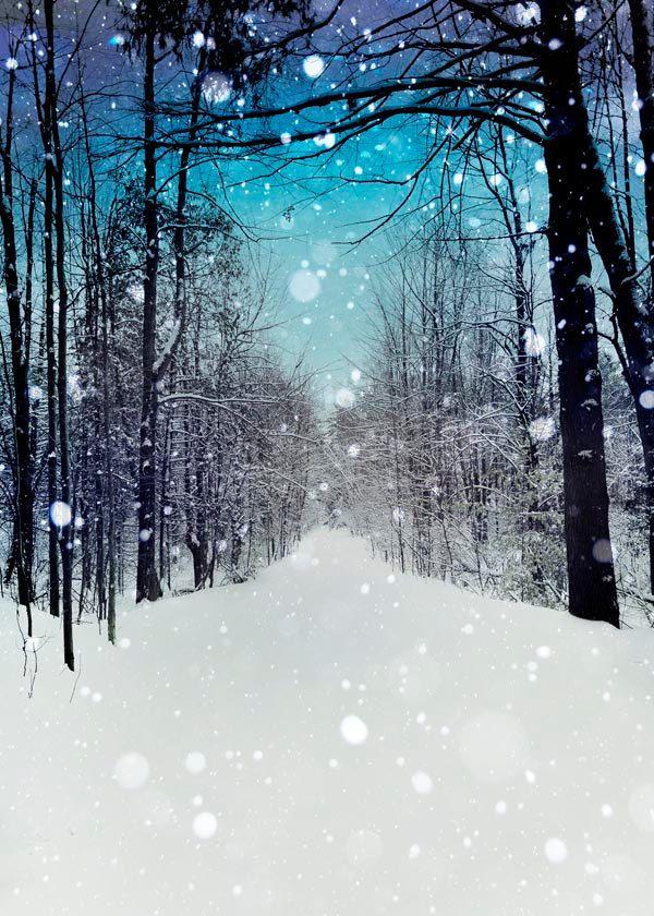 Winter, Snow Photography, blue decor, falling snow, navy blue, white