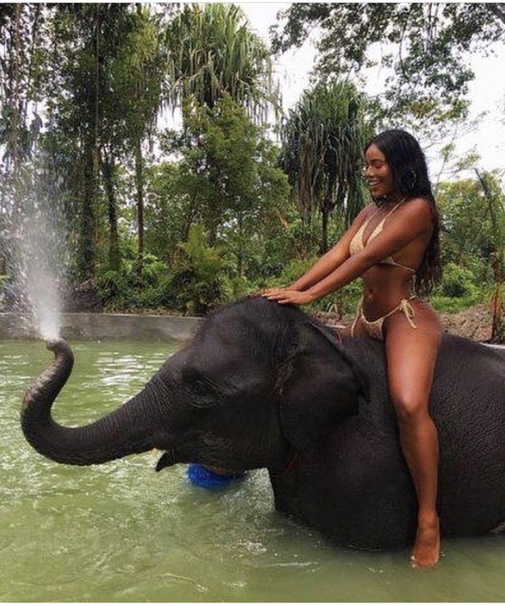stevens-naked-elephant-shag-women-tits