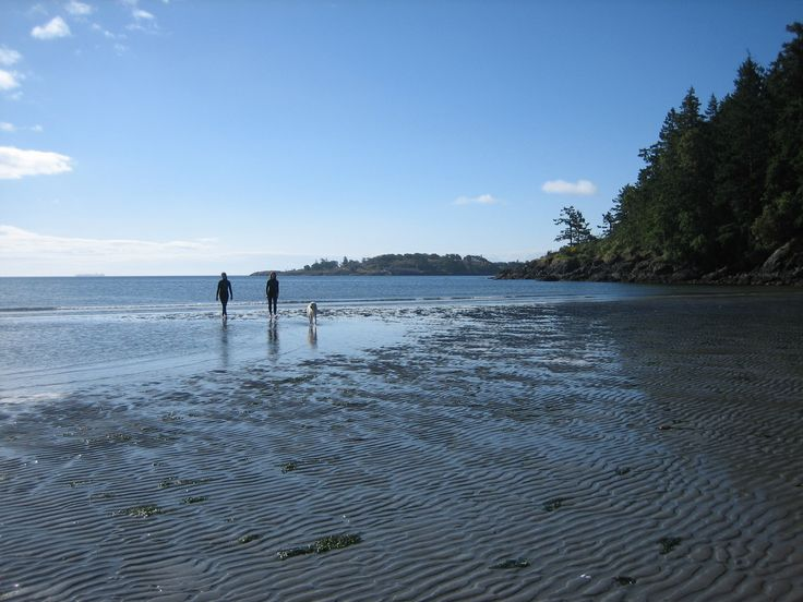 Weir's Beach has such beautiful sand - come for a stroll!