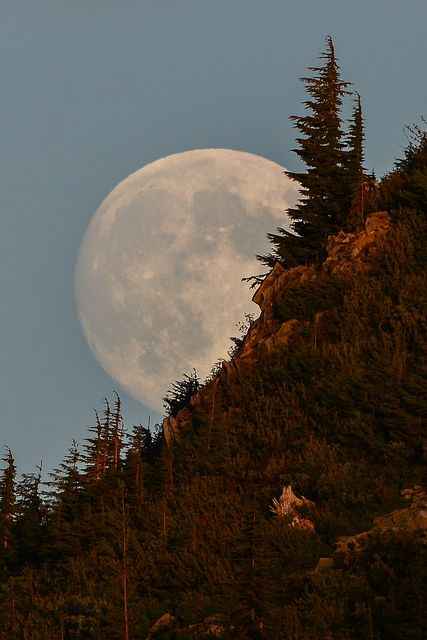 Moonrise at Mount Rainier National Park, Washington