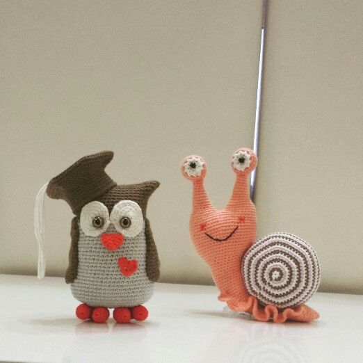 snail owl