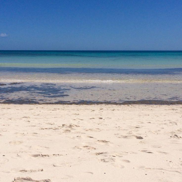 Riu Oliva Beach - Fuerteventura