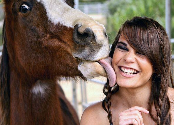 20 Kissy Face Horses « HORSE NATION