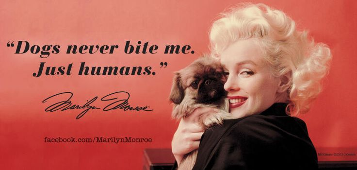 5 Marilyn Monroe Quotes You'll Love - YeahMag